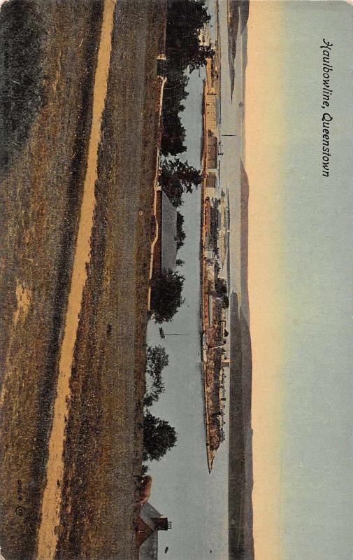 Haulbowline Queenstown New Zealand Scenic View Antique Postcard J47559