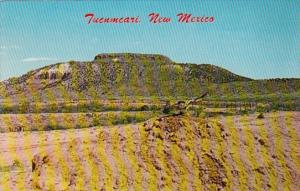 New Mexico Tucumcari Mountain