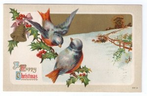Christmas Blue Birds on Holly Bough Vintage Lightly Embossed Litho 1910 Postcard
