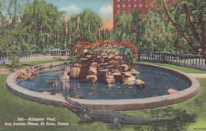 Texas San Antonio Alligator Pool San Jacinto Plaza Curteich