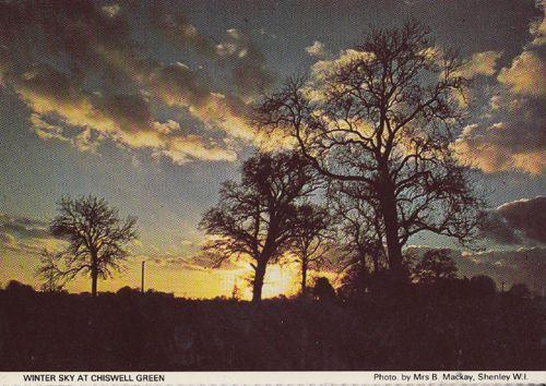 Chiswell Village Green Winter Sky Herts Hertfordshire Womens Institute Postcard