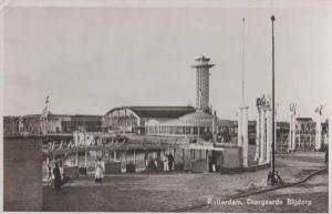 Rotterdam Zoo Entrance Diergaarde 1950s Real Photo Holland Postcard
