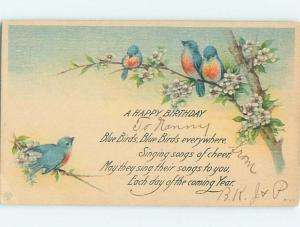 Divided-Back birthday CUTE BLUE BIRD IN THE BRANCHES o9731