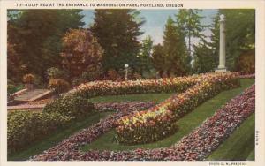 Tulip Bed At The Entrance To Washington Park Portland Oregon