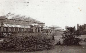 UK The Temperate House or Winter Garden Kew 01.52