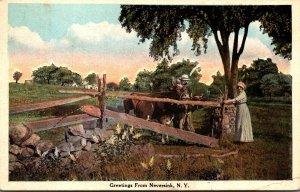 New York Greetings From Neversink Farm Scene 1924