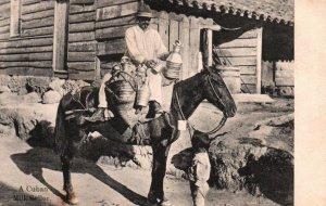 Cuba Cuban Milk Seller On Horse Vintage Postcard