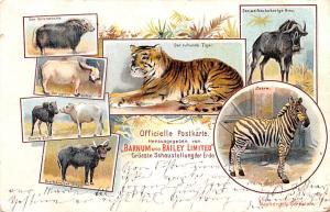 Barnum & Bailey Limited Der Ruhende Tiger Circus Postal Used Unknown