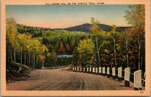 VTG Kill Horse Hill on the Arnold Trail in Maine ME Postcard