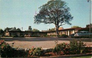 Auto 1950s Terrace Court Santa Cruz California 1950s roadside Postcard 21-3028