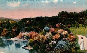 New York Adirondacks Scene Near Strykersville 1916