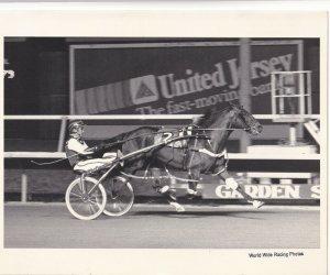 GARDEN STATE PARK RACE TRACK, Harness Horse Race, TILL WE MEET AGAIN, winner