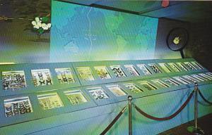 New York City Long Island Centerport Vanderbilt Museum Butterfly Collection