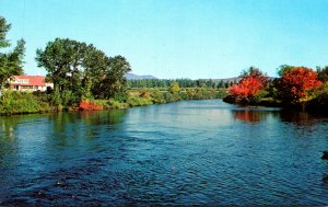 Maine Jackman View Of The Moose River