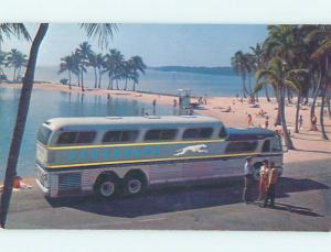 Unused 1960's POSTCARD AD - GREYHOUND BUS SUPER SCENICRUISER M6981