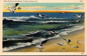 New York Coney Island Sea Gulls On The Beach