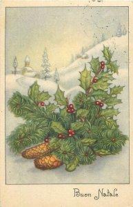 Greetings christmas winter snow buon natale Postcard