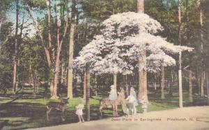 North Carolina Pinehurst Deer Park In Springrime Albertype