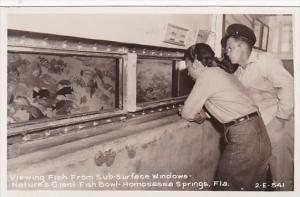 Florida Homosassa Springs Viewing Fish From Sub-Surface Windows Real Photo