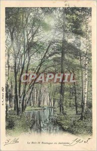 Old Postcard The Bois de Boulogne in Autumn