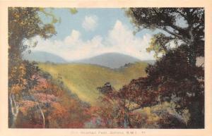 B.WI. Jamaica Blue Mountain Peak