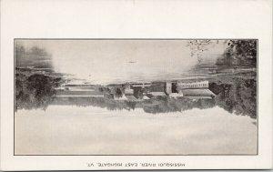 Missisquoi River East Highgate VT Vermont c1920 Litho Postcard F79 *as is