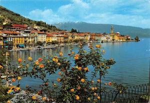 Italy Lago di Garda Salo Panorama General view Boats Auto Cars