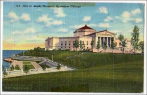 IL - John G Shedd Memorial Aquarium Chicago  (tape marks)