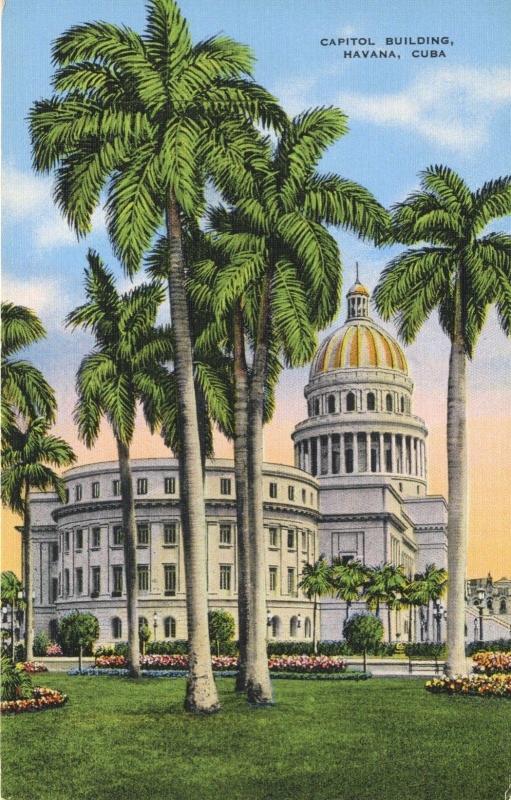 Havana Cuba Habana Capitol Building Palm Trees Vintage Postcard