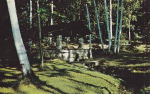 Summer House Camping Park , Bruce Peninsula, Miller Lake , Ontario , Canada ,...
