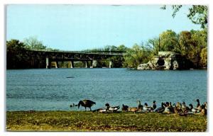1950s/60s Monterey Bridge, Big Rock Cave and Memorial, Janesville, WI Postcard