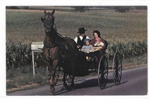 Amish family Open Horse and Buggy Pennsylvania Dutch Country Vintage Postcard