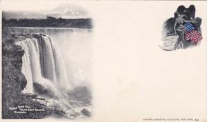 GOAT ISLAND, New York, 1900-1910's; Horse Shoe Fall, Niagara