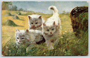 Cats~Green-Eyed White Kittens on the Prowl~Daisy Meadow~Hay Mounds~Artist~1908