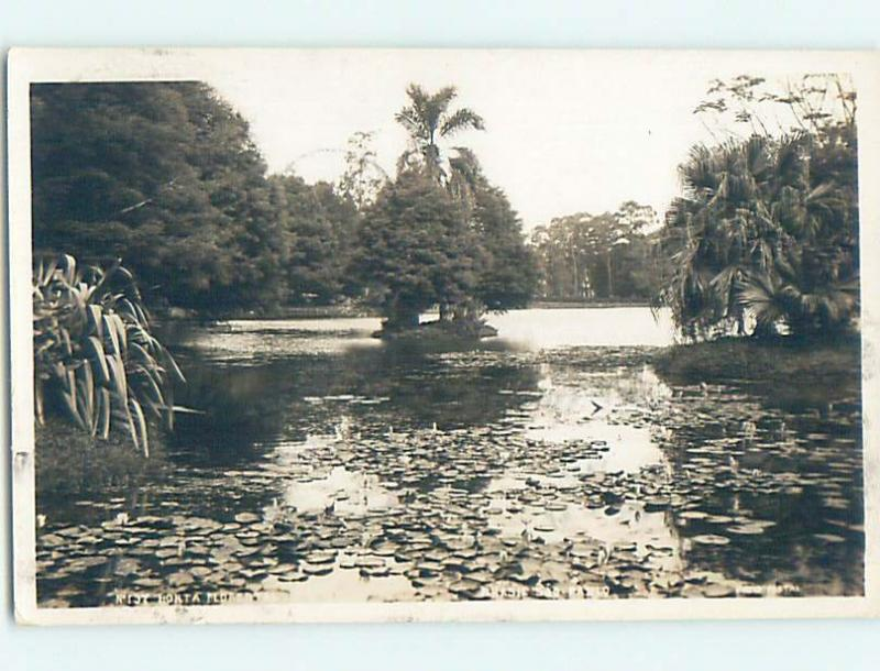 old rppc LILY PADS ON POND Sao Paulo Brazil HM1885