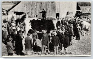 Independence Ohio~Comic Farm Pun~Everything on Large Scale~Exaggerated Cows~1914