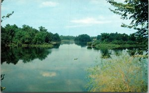 Vtg Silver Lake Milford Delaware DE Unused Postcard