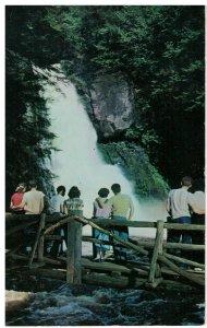 Postcard - Bushkill Falls, Niagara of Pennsylvania, Pocono Mountains