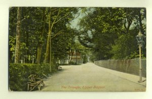 tp6670 - Sussex - The Avenue/ The Triangle at Upper Bognor c1913 -  Postcard