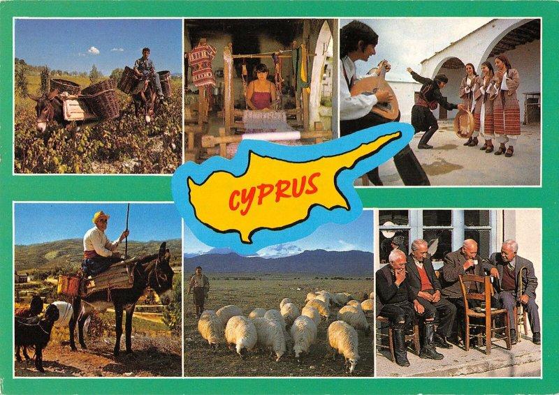 B108869 Cyprus Traditional Life Sheeps Animals, Folklore