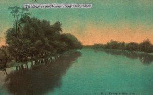 Saginaw, Michigan, MI, Tittabawassee River, Unused Vintage Postcard g8908