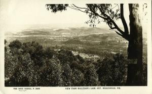 australia, HEALESVILLE, Victoria, View from Malleson's Look Out (1930s) RPPC (1)