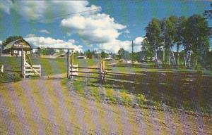 Canada Guest Ranch Lac La Hache British Columbia