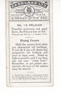 Cigarette Cards Carreras A Kodak at the Zoo 1st series No 13 Pelican