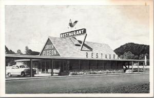 Pigeon Forge TN~Fowl Wind Vane Atop Pigeon Restaurant~c1950 Ford