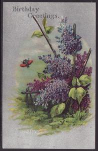 Birthday Greetings,Flowers Postcard
