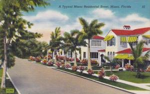 A Typical Miami Residential Street Miami Florida