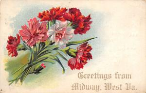 Midway West Virginia~Red White Pink Carnations~Embossed Greeting~1909 Postcard