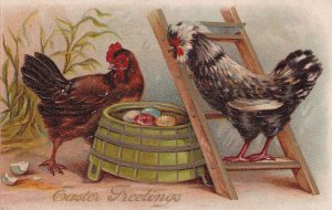 EASTER, 1900-10s; Greetings, Rooster & Hen lookng at cracked decorated egg