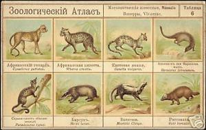 russia, Zoological Atlas, Animals Mammal 10s Embossed